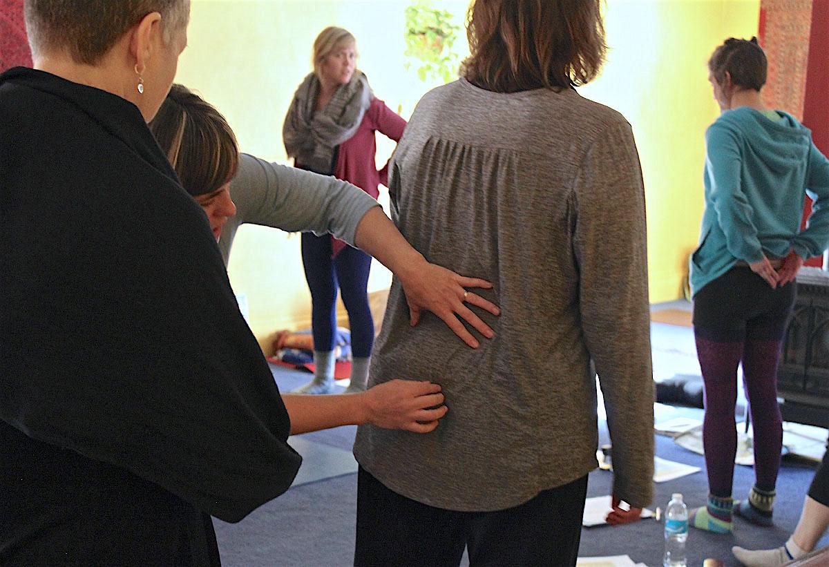 mengajar_anatomi_yoga