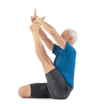 yoga_heron