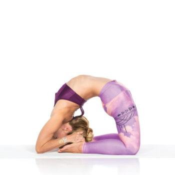 yoga_king_pigeon